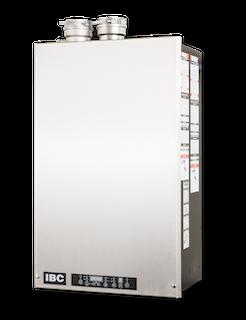 IBC - DUAL CONDENsing bioler - DC Series